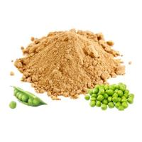 Buy cheap Pea Protein Isolate-High Quality NON-GMO 80% & 85% from wholesalers
