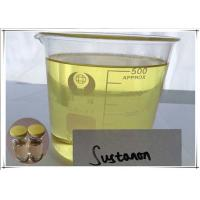 Sustanon 250mg/ml Injectable Bulking Steroids Muscle Building Oil For Quick Mass Gain