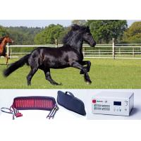 Buy cheap Laser belt Veterinary Laser Machine Animal pain relief With continuous Mode from wholesalers