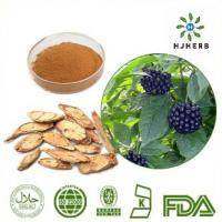 Buy cheap Food Grade 0.8% Siberian Ginseng P.E Herb Extract Powder product