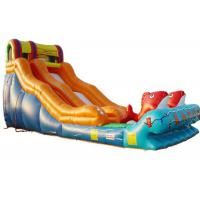 Buy cheap Kindergarten Baby Kahuna Large Inflatable Slide Inflatable Fun Slide Fire Resistance from wholesalers