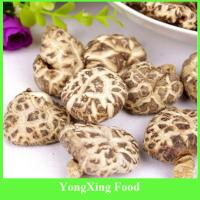 Buy cheap China Dry Cultivated Flower Shiitake Mushroom from wholesalers