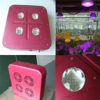 Buy cheap 2012 Newest for greenhouse,pure aluminium skin,grow light led from wholesalers
