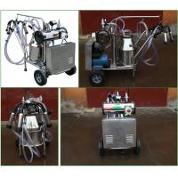 Buy cheap stainless steel type milking machine equipment for cow and cattle from wholesalers