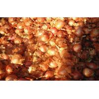 Buy cheap 2cm - 5cm Yellow / Red Asian Shallots Round Containing Water , Sugar, spicy pure from wholesalers