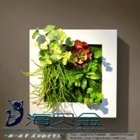 Buy cheap Plastic Frame Artificial Living Plants Wall Hanging Ornament Craft for Commercial Office from wholesalers
