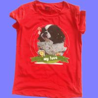 Low price small high quality t shirt printer price in for T shirt printing machine cost in india