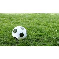 Buy cheap artificial grass for soccer(QINGDAO)---SKYJADE from wholesalers