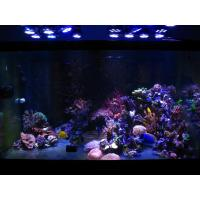 Buy cheap 150 watt led coral reef aquarium lights from wholesalers