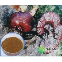 Buy cheap Reishi Mushroom extract 40% Polysaccharides from wholesalers