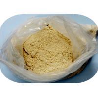 Muscle Gain Steroids Hormones Powder Tibolone Acetate Livial CAS 5630-53-5