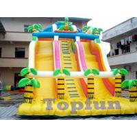Buy cheap Large Inflatable Exciting Brazil Tropical Forest Style Slide With Double Slideways from wholesalers