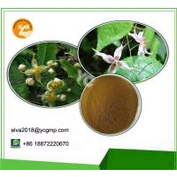Buy cheap Yellow Brown Damiana Extract L Herbal Viagra Effective Naturual CAS 330784 47 9 from wholesalers