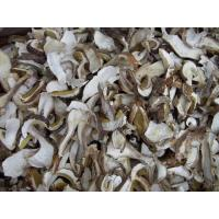 Buy cheap Dried Boletus Edulis(porcine) from wholesalers