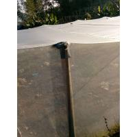 Buy cheap Plain Weaving 2 - 3% UV Insect Mesh Netting White For Crop Cover 0.8 * 0.8mm product