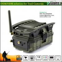Buy cheap Hidden Camo MMS Trail Camera For Wildlife Hunting Game, Excellent Quality With SMS Remote Alarm Systerm from wholesalers