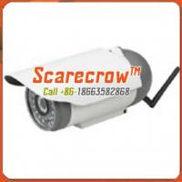 Buy cheap Wireless microwave camera Waterproof infrared night vision wireless ip camera Scarecrow™ from wholesalers