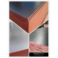 Buy cheap Construction Shuttering Plywood/18mm Film Faced Plywood /Waterproof Filmed Plywood Board from wholesalers