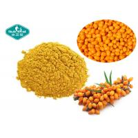Buy cheap High Purity Sea Buckthorn Fruit Powder Blends Seamlessly With Drinks And Foods from wholesalers