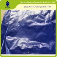 Buy cheap custom made waterproof plastic tarpaulin sheet/woven fabric PE tarpaulin Tb009 from wholesalers