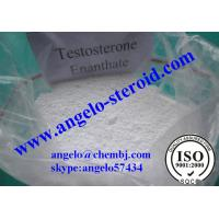 Buy cheap Muscle Building Testosterone steroid Injectable Test E /Testosterone Enanthate 315-37-7 from wholesalers