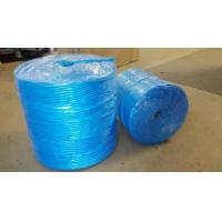 Buy cheap 3mm 4mm Farm Use Twisted Banana Twine Hay Baler Rope Blue PP Baler Twine from wholesalers