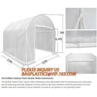China Easy install greenhouse tomato single-span Plastic Film Green House,Low cost garden green houses for plating, PACKAGES on sale