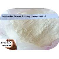Npp Deca Durabolin Steroid Nandrolone Phenylpropionate For Muscle Growth