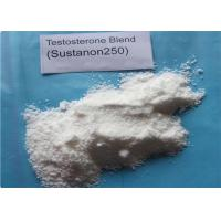 Buy cheap Injectable Sustanon 250 Raw Steroid Powders Testosterone blend For Bodybuilding from wholesalers