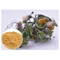 Buy cheap Flavones Dandelion Root Extract Powder For Diuretic Whole Herb Extraction from wholesalers