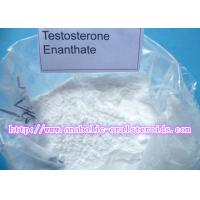 White Powerful Testosterone Steroid Hormone Testosterone Enanthate for Bodybuilding/Test E CAS 315-37-7