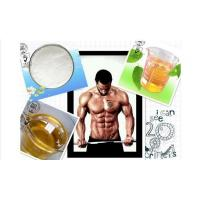 nandrolone experience