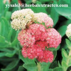 Buy cheap Rhodiola Rosea P.E., Salidrosides 3%, CAS NO.:10338-51-9, Anti-aging, anti-anoxidant,, natural herbal extract, Yongyuan product