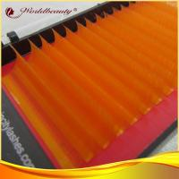 Buy cheap Orange C curl Mink Eyelashes Extensions Polybutylene Terephthalate from wholesalers