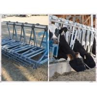 Buy cheap Durable Feeding Equipment Goat Head Lock Fence Powder Coated from wholesalers