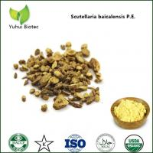 China baicalin 85%,pure natural baicalin,baikal skullcap extract baicalin,98% baicalin on sale