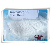 Buy cheap 99.3% Purity Bulking Steroid Cycle White Powder Testosterone Enanthate For Muscle Building from wholesalers