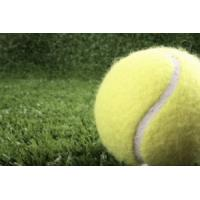 Buy cheap Suntex Golden Slam-T19 tennis artificial grass from wholesalers