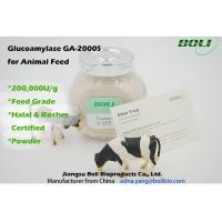High Activity Biological Enzymes 200000 U / g , Animal Feed Amyloglucosidase Enzyme