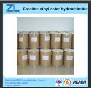 China 15366-32-2 Creatine ethyl ester hydrochloridel foodadditive on sale