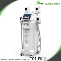 Buy cheap Cryolipolysis weight reduction beauty machine from wholesalers