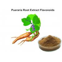 Buy cheap Pueraria Natural Plant Extracts 40% Flavonoids for Hangover breast enhancement / postponed female menopause from wholesalers