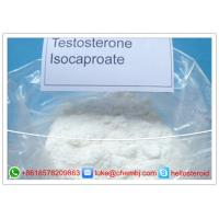 Buy cheap Legal Powder Testosterone Steroids , Testosterone Isocaproate CAS 15262-86-9 from wholesalers