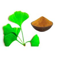 China Ginkgo Biloba Extract Powder With Advanced Extraction Technology CHP2015 on sale