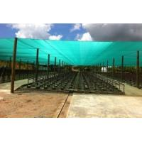 Buy cheap UV Blue Construction Safety Nets HDPE 8 Meters For Protection from wholesalers
