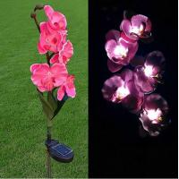 Buy cheap Pink Phalaenopsis Stainless Steel Solar Garden Lights, Flower Solar Powered Outdoor Lights from wholesalers