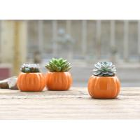 Buy cheap Small Pumpkin Shaped Desk Ornament Diy Concrete Mold / Silicone Cement Molds from Wholesalers