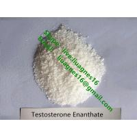 Buy cheap Good Kick Gear Testosterone Cypionate Bodybuilding Prohormones Test Cypionate 250 from wholesalers