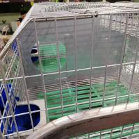 Buy cheap commercial female rabbit cage automatic rabbit cage mother rabbit cage for sale from wholesalers
