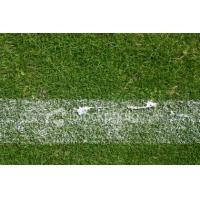 Buy cheap Twisted grass,used for sports ground from wholesalers